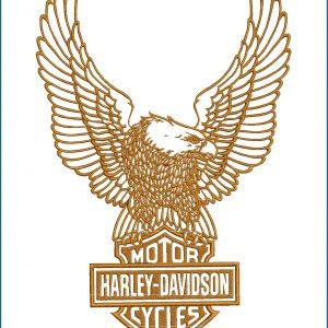 Large Harley Davidson Upwing Eagle 2 Embroidery Design Birds Harley Davidson